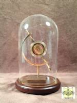 Challenge Coin Display Dome - Single Coin with Stand for Mid-Size Coin