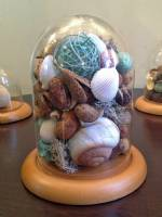 Glass Domes - Medium 5�