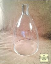 Glass Dome - Medium Bell Jar Cloche - 9