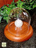 Coin Display Dome - Glass - 4