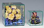 Display Cases -  Glass Cube Cases