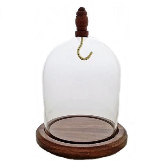 "Glass Pocket Watch Dome - Wood Top Hook & Knob 3"" x 4"""