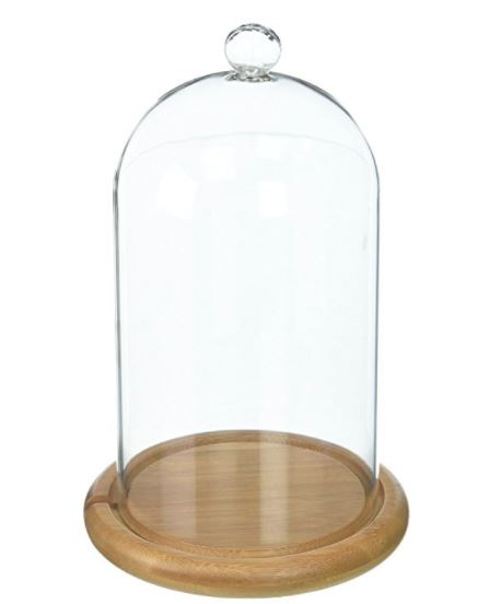 "Glass Cloche - 4"" x 8"" Bell Jar Dome"
