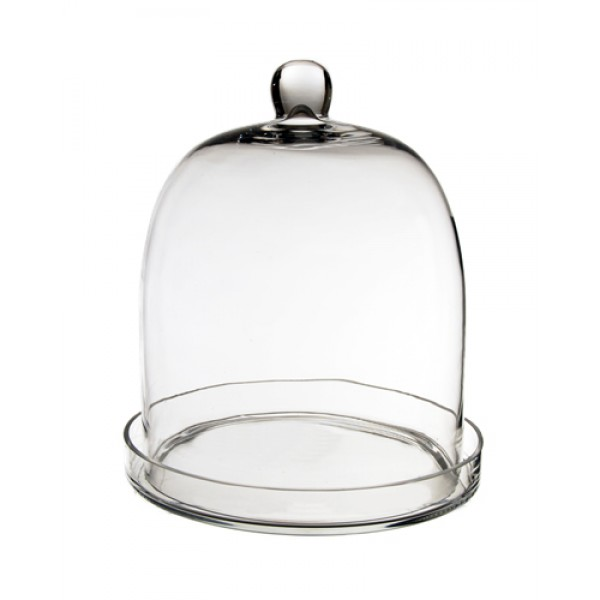 Glass Dome - Bell Jar Cloche with Glass Base