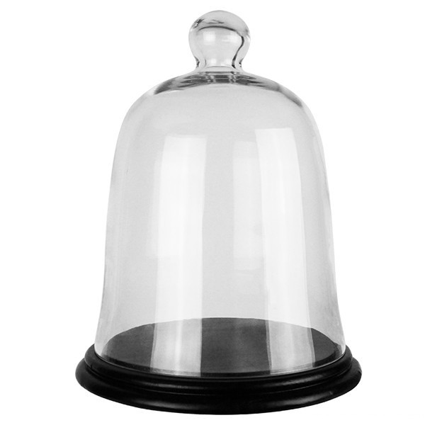 Glass Dome - Bell Jar Cloche with Base