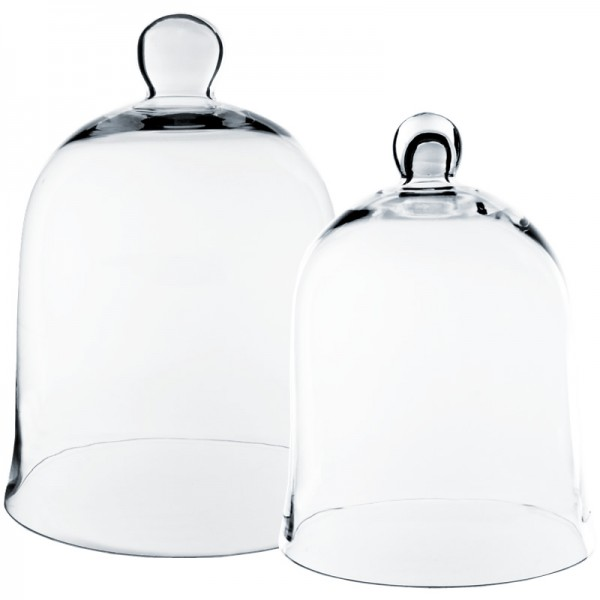 Glass Dome - Bell Jar Cloche Set