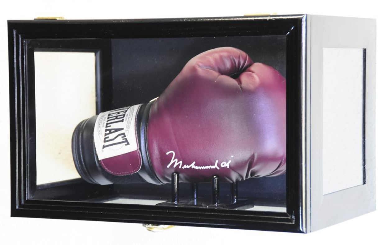 Display Case - Boxing Glove with Stand