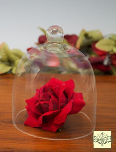 "Glass Domes - Small Bell Jar Cloche - 6"" x 7""H"
