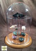 "Glass Platform Dome - 8"" x 12"""