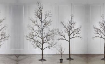 Unique Display Trees
